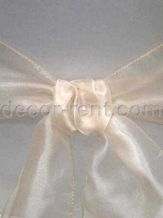 Champagne Organza Sash. (By AP CREATIONS).