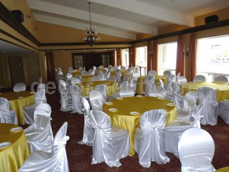 White and Yellow Reception